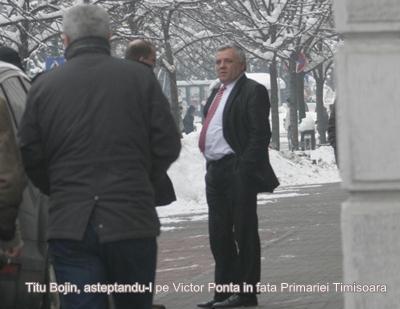 bojin asteapta in fata Primariei